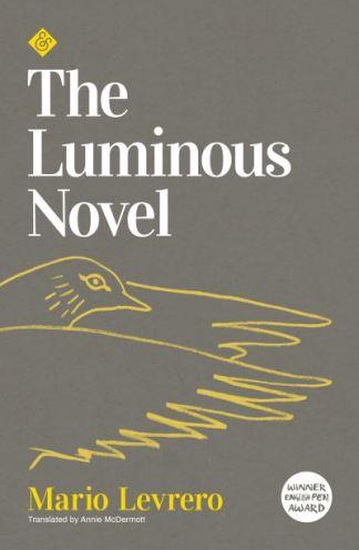 The Luminous Novel - Mario Levrero