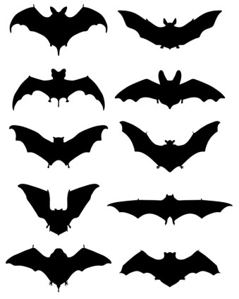 Black silhouettes of different bats, vector illustration