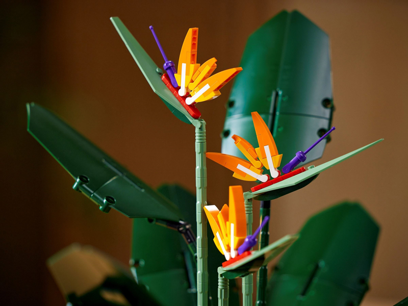LEGO Creator Expert Birds of Paradise