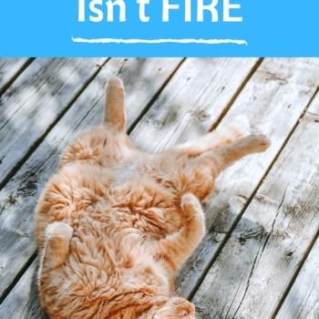 Lying Flat Isn't FIRE
