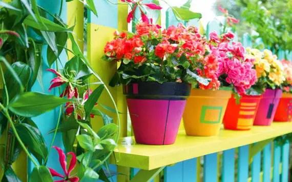 Un Jardin Trs Color Le Jour Et Bien Clair La Nuit