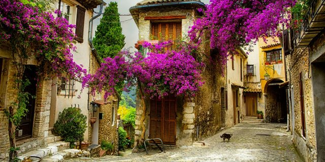 wedding in provence france