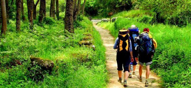 hiking camino de santiago