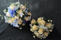 131 Bride & Bridesmaid