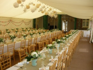 133 Marquee Flowers