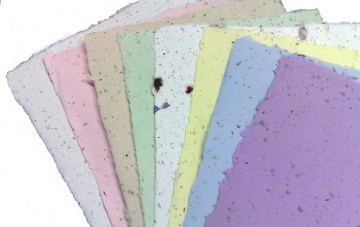 Eco Chic Seeded Paper For Your Wedding Stationary
