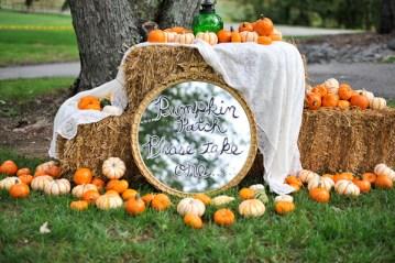 Fall wedding pumpkin patch | Natalie Franke Photography (3)