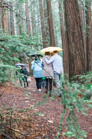 Colourful Redwoods Wedding in the Rain | Caitlin Turner Photography | Bridal Musings Wedding Blog 8