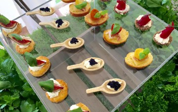 Canape Grazing Station (2)