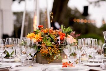 Harvest Winery Wedding by Brady Puryear 55