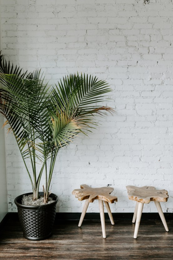 Minimal Tropical Wedding Inspiration With A Surprising Fresh Dinner Idea – Alicia Wiley 40