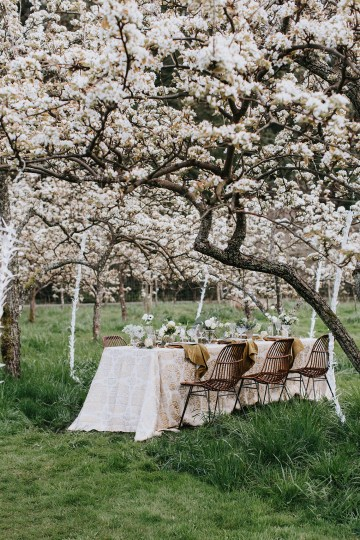 Japanese Inspired Apple Orchard Wedding Ideas – New Creations Wedding Design and Coordination – Lion Lady Photography 9