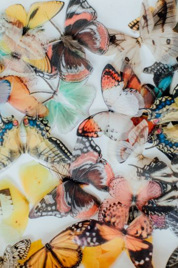 Pretty Butterfly Inspired Wedding Ideas – Anja Schneemann Photography 28