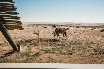 Adventurous Namibia Desert Safari Wedding – Nifty Studio Photography 37