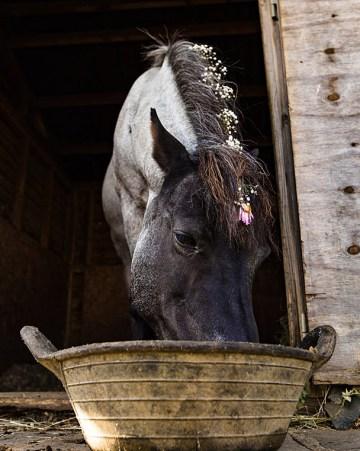Charming English Wildflower Wedding At The Family Farm – Jonny Barratt Wedding Photography 55