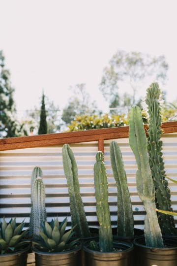 Eclectic San Diego Garden Wedding – Barrels and Branches – Lets Frolic Together 3