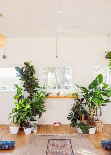 How to Decorate A Tropical Wedding for Your Home or Backyard – Light and Space – Bright Bird Photography 10