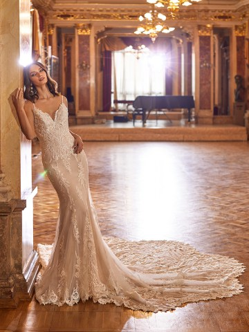 Extravagant Wedding Dresses for 2021 2022 – Val Stefani – Bridal Musings – D8274 A