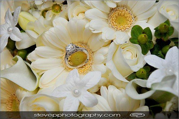 Steve Pomerleau Photography