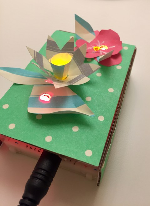 enclosure for the circuits: a flower garden