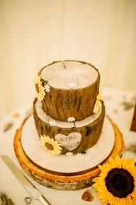 A Pretty Wedding at Cusworth Hall (c) Hayley Baxter Photography (32)