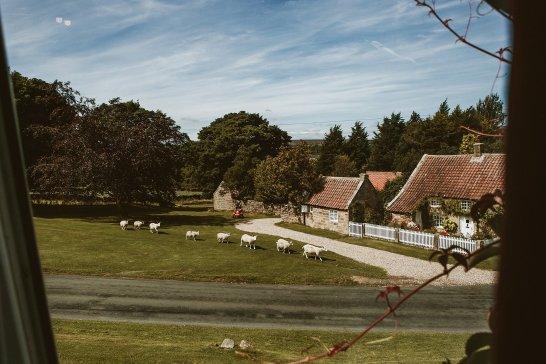 A Multicoloured Wedding at Danby Castle (c) Benni Carol Photography (11)
