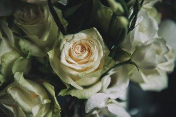A Pretty Wedding at Holdsworth House (c) Lloyd Clarke Photography (28)
