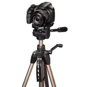 top tripod for bridge camera