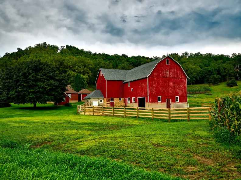 Farm insurance can vary from aWinery, Organic Arable farm, Pastoral Farming and much more.