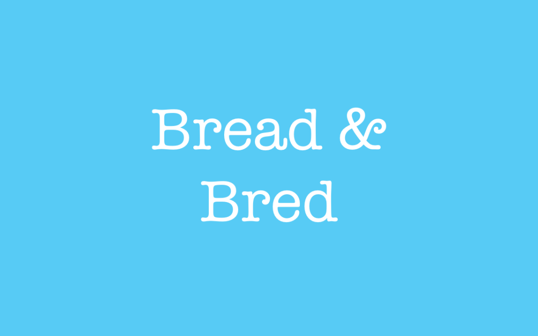 What is the difference between bread and bred?
