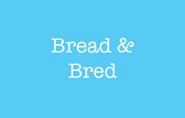 Bread and Bred Commonly Confused Words bridger-jones.com