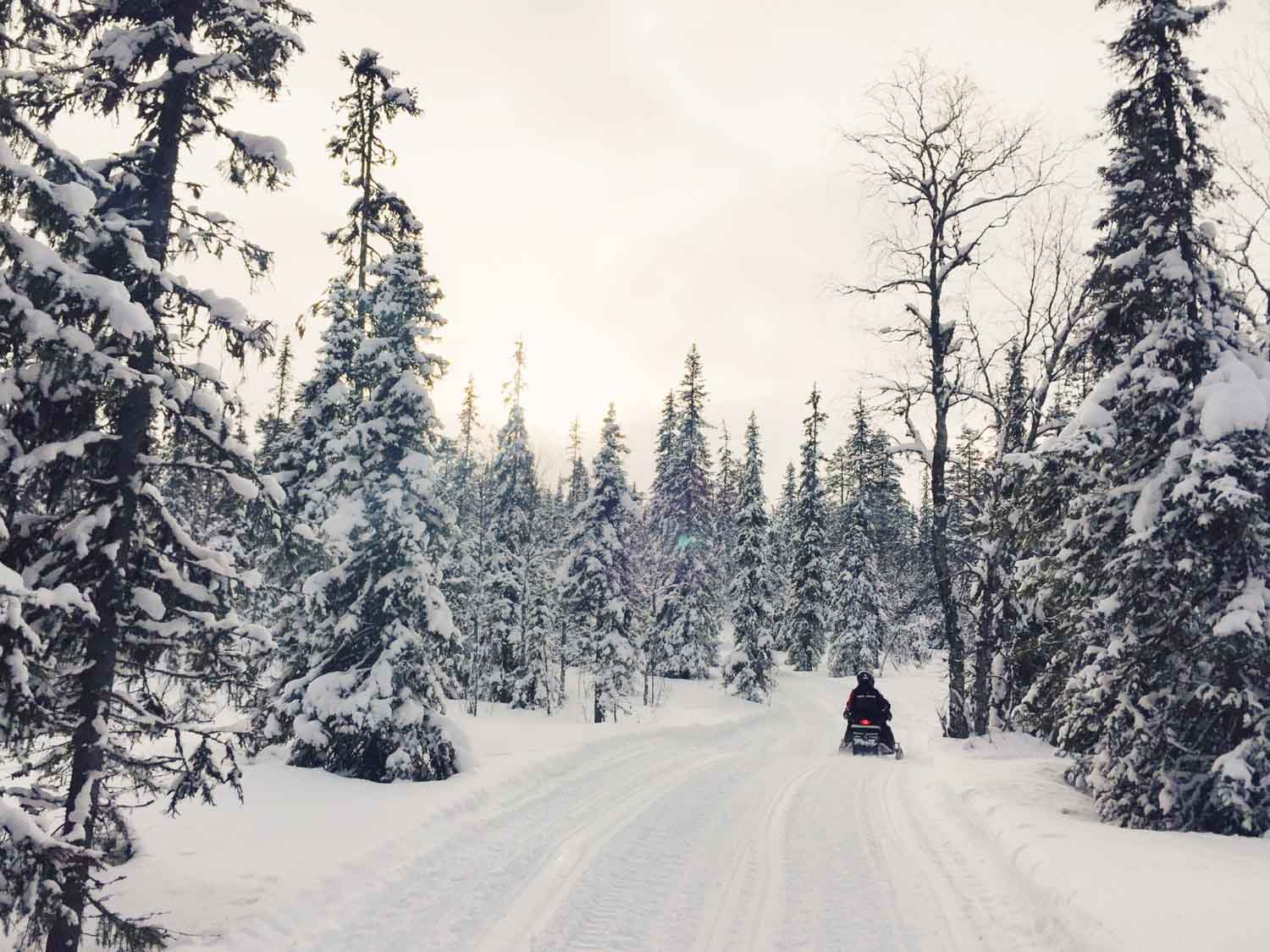 5-day Finland itinerary Northern Lights - Snowmobiling