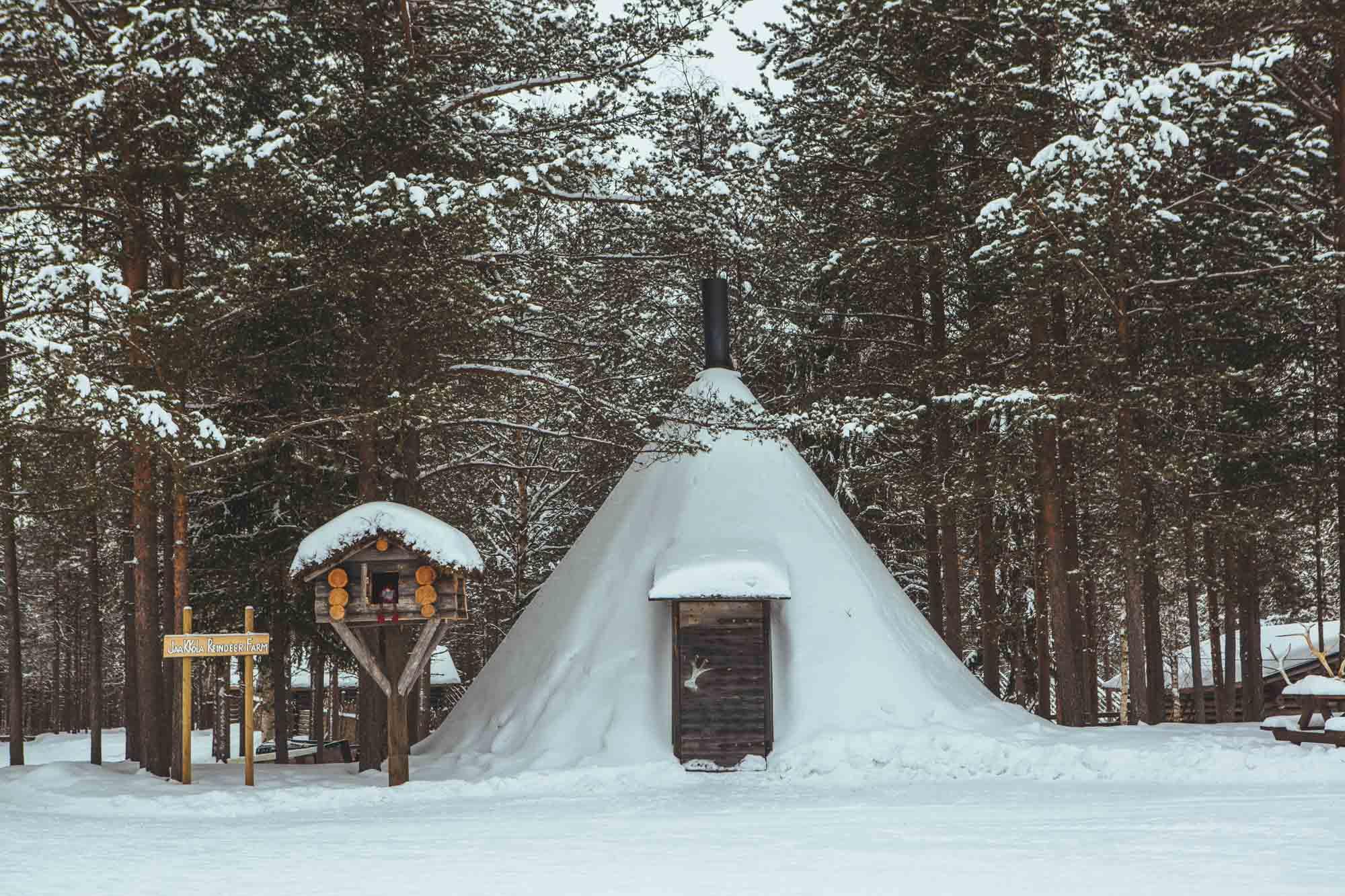 Jaakkola Reindeer Farm - 5-day Finland itinerary Northern Lights