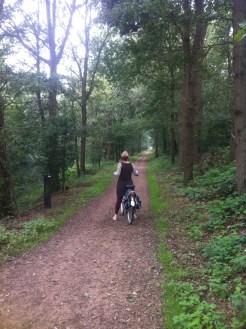 Lovely bike paths