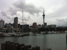 Looking back at Auckland skyline