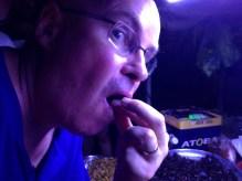 Eating bug