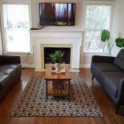 Indoor picture of living room, flat panel, fireplace and plants
