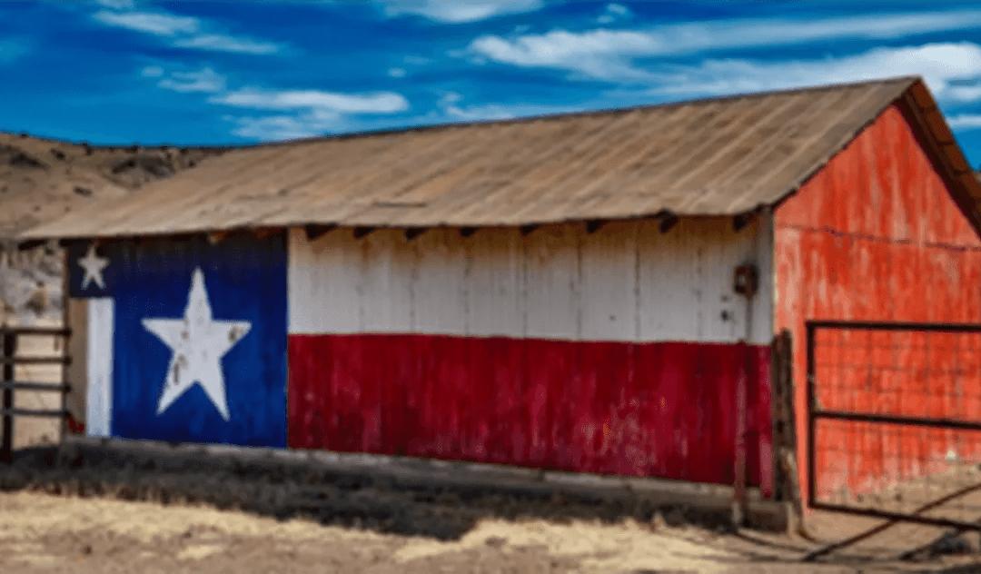 Texas Opiate Crisis