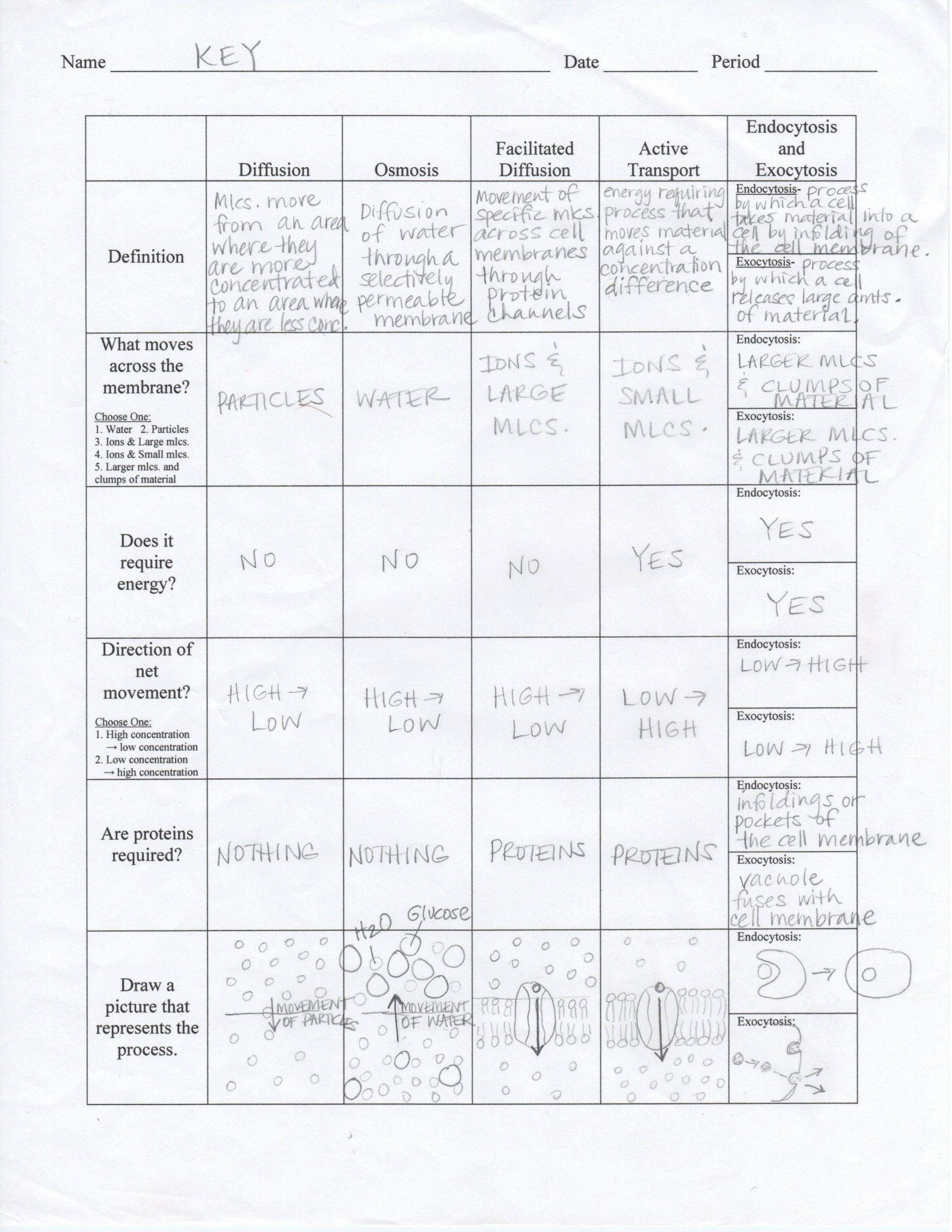 Bible Worksheets