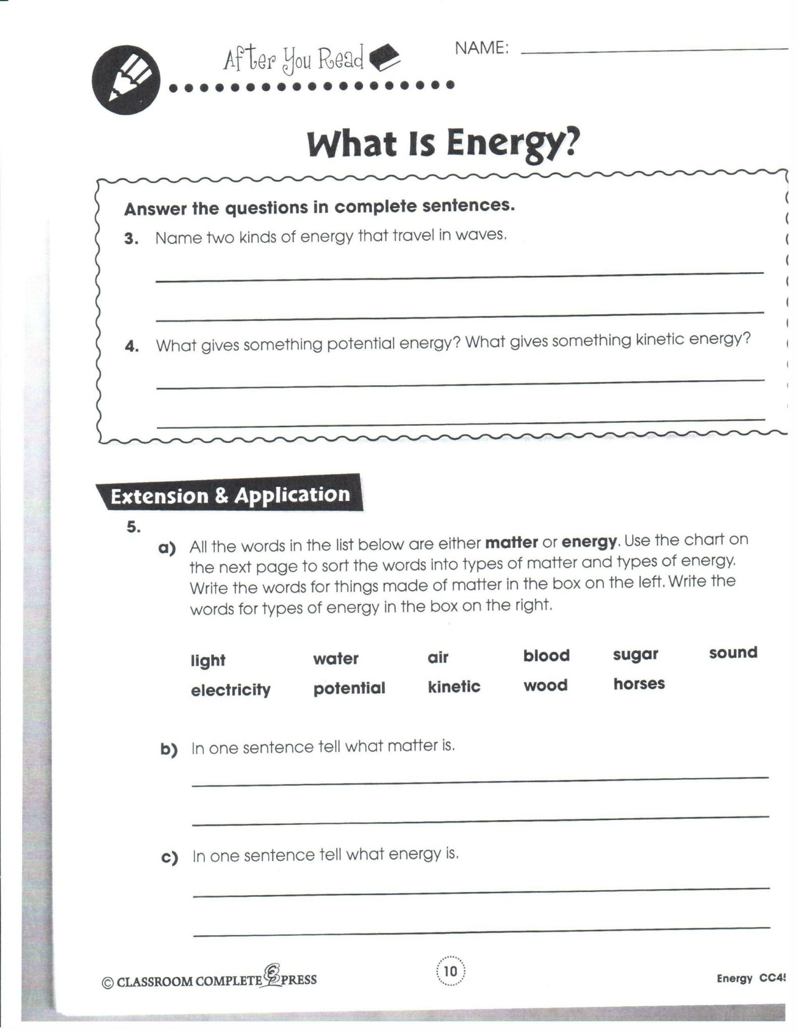 Bill Nye Biodiversity Worksheet Answers