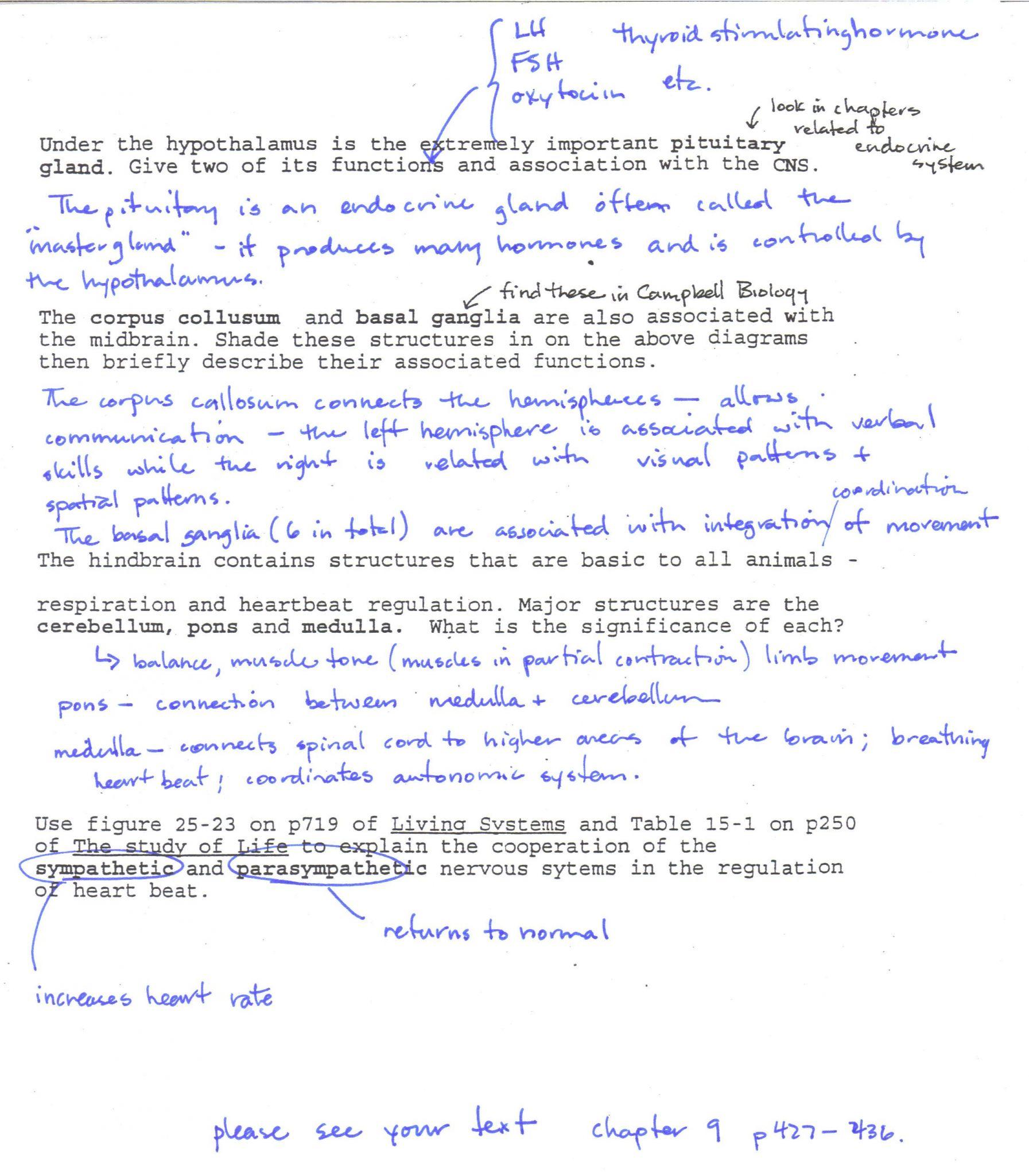 Dna Fingerprinting Activity Worksheet