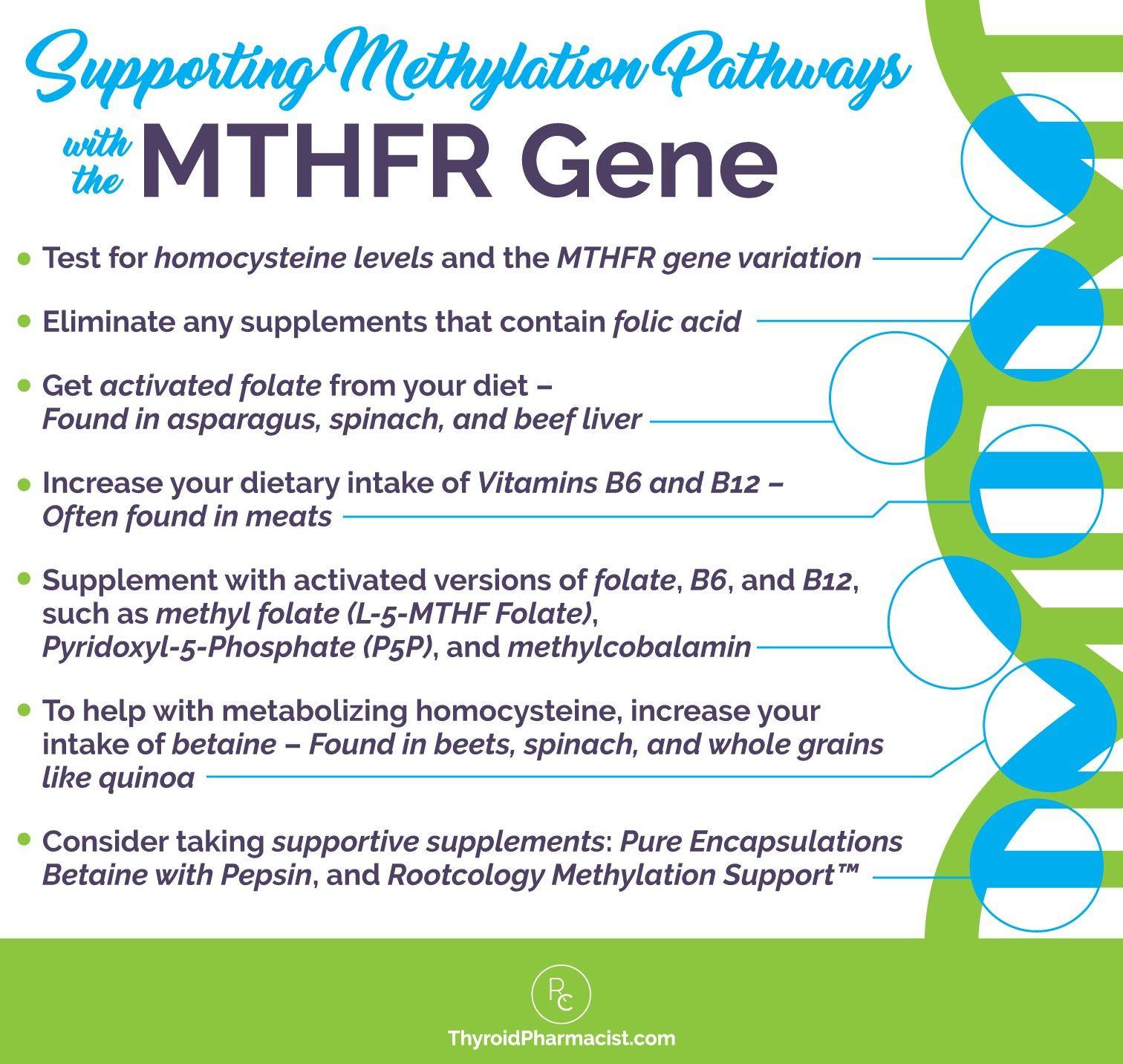 Genetic Disorders Problem Pregnancies Worksheet Answers
