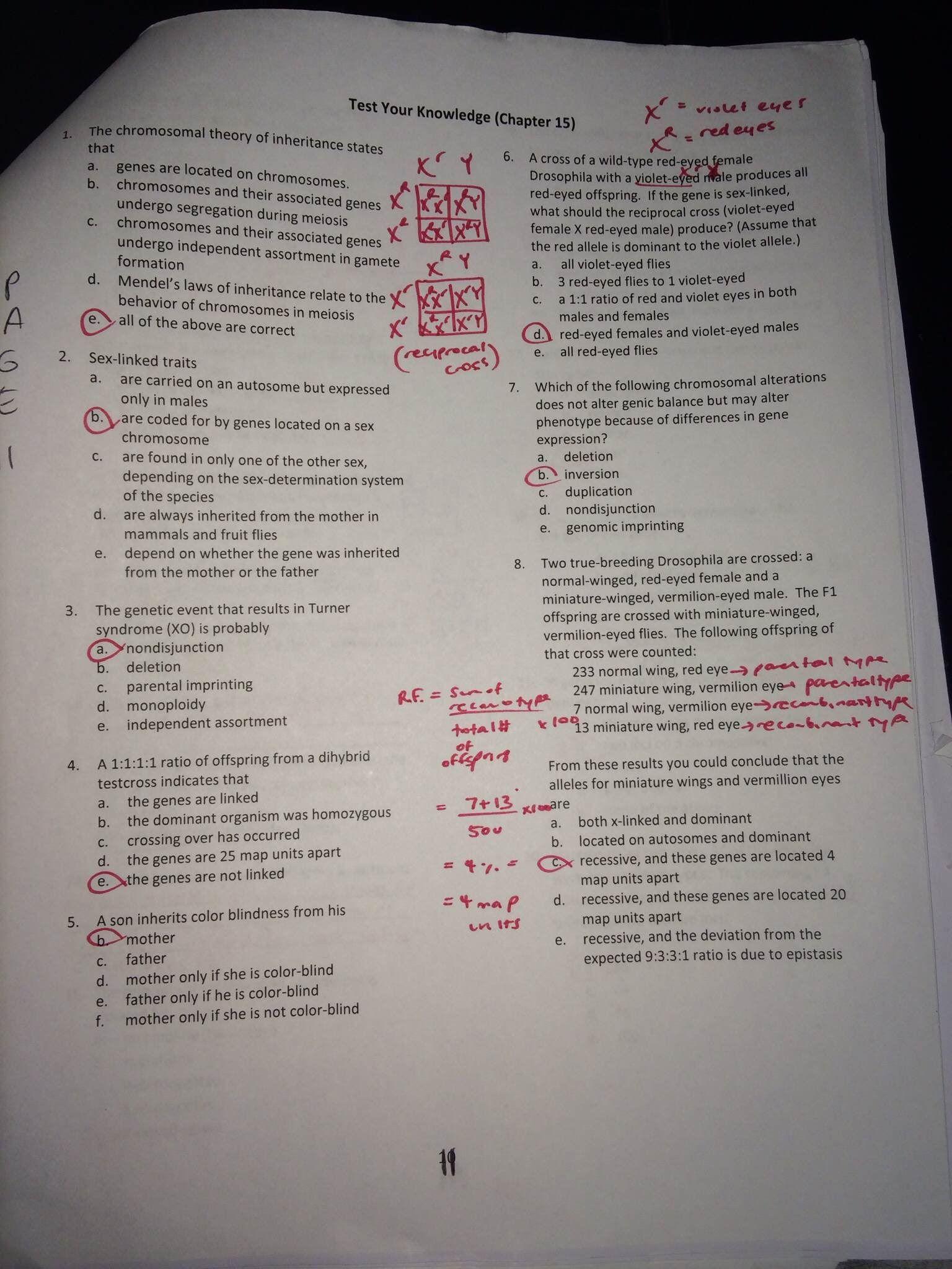 Genetics Practice Problems Worksheet Answers