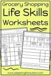 Life Skills Worksheets for Special Education and Autism Grocery Store