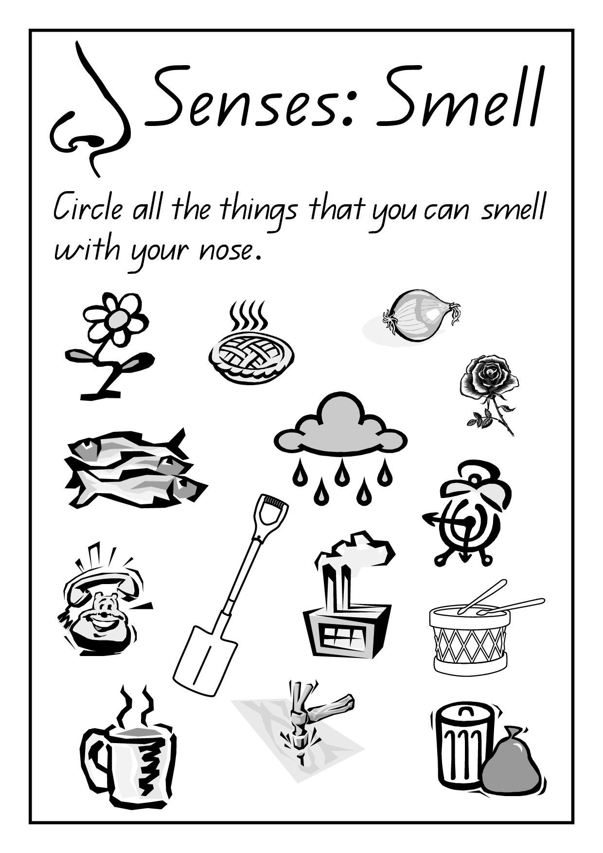 Kindergarten Science Worksheets