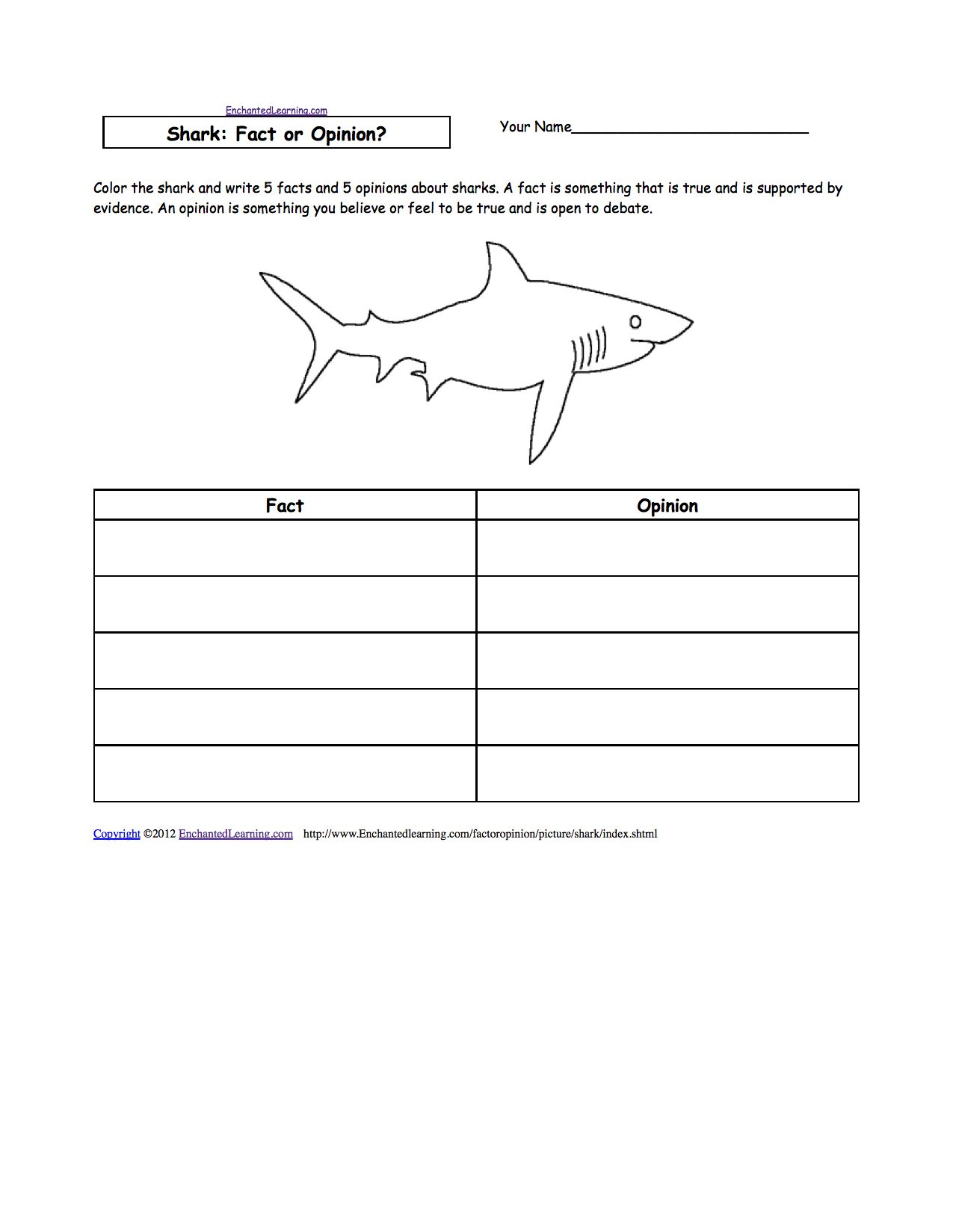 Life Cycle Of A Star Worksheet Answer Key