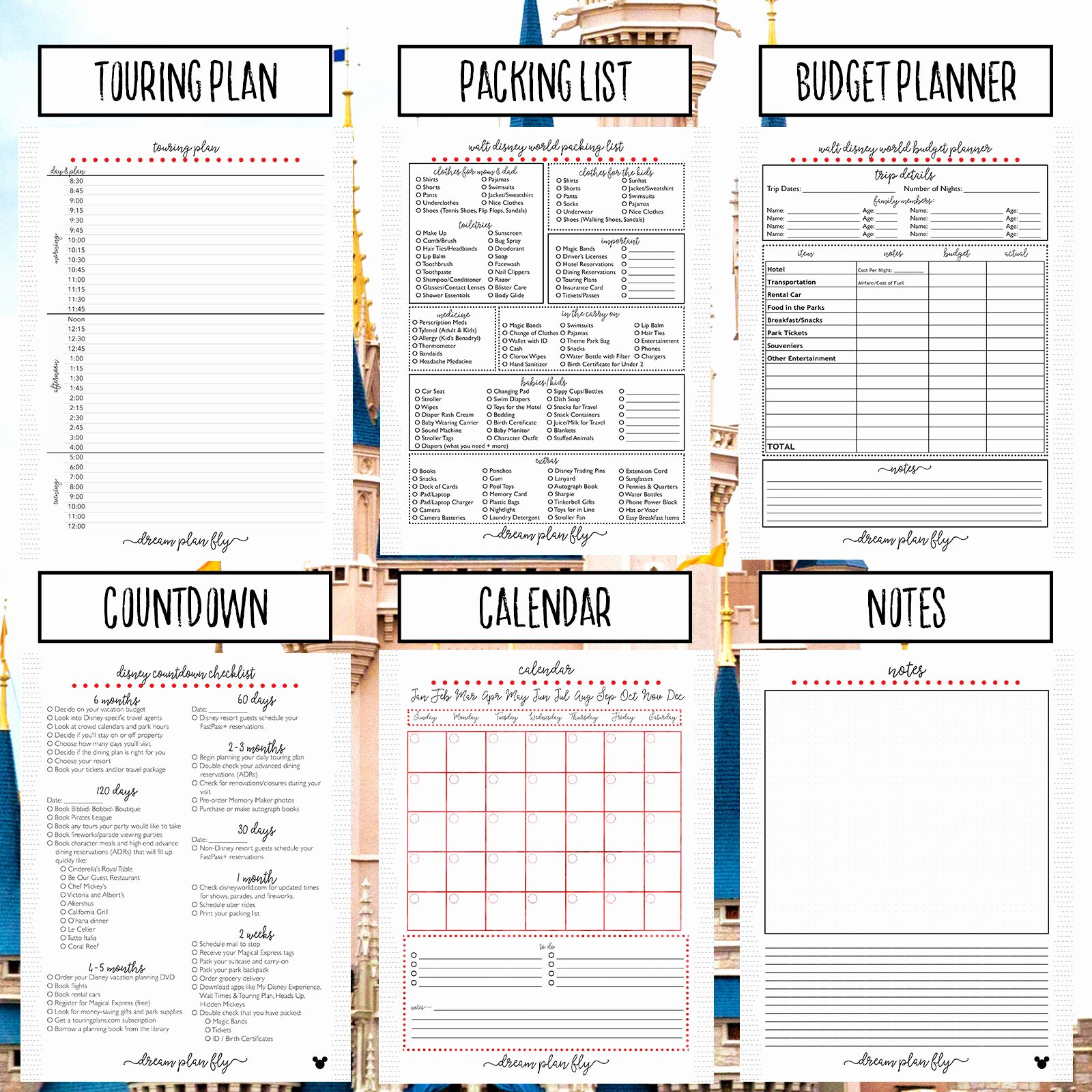 Person Centered Planning Worksheets