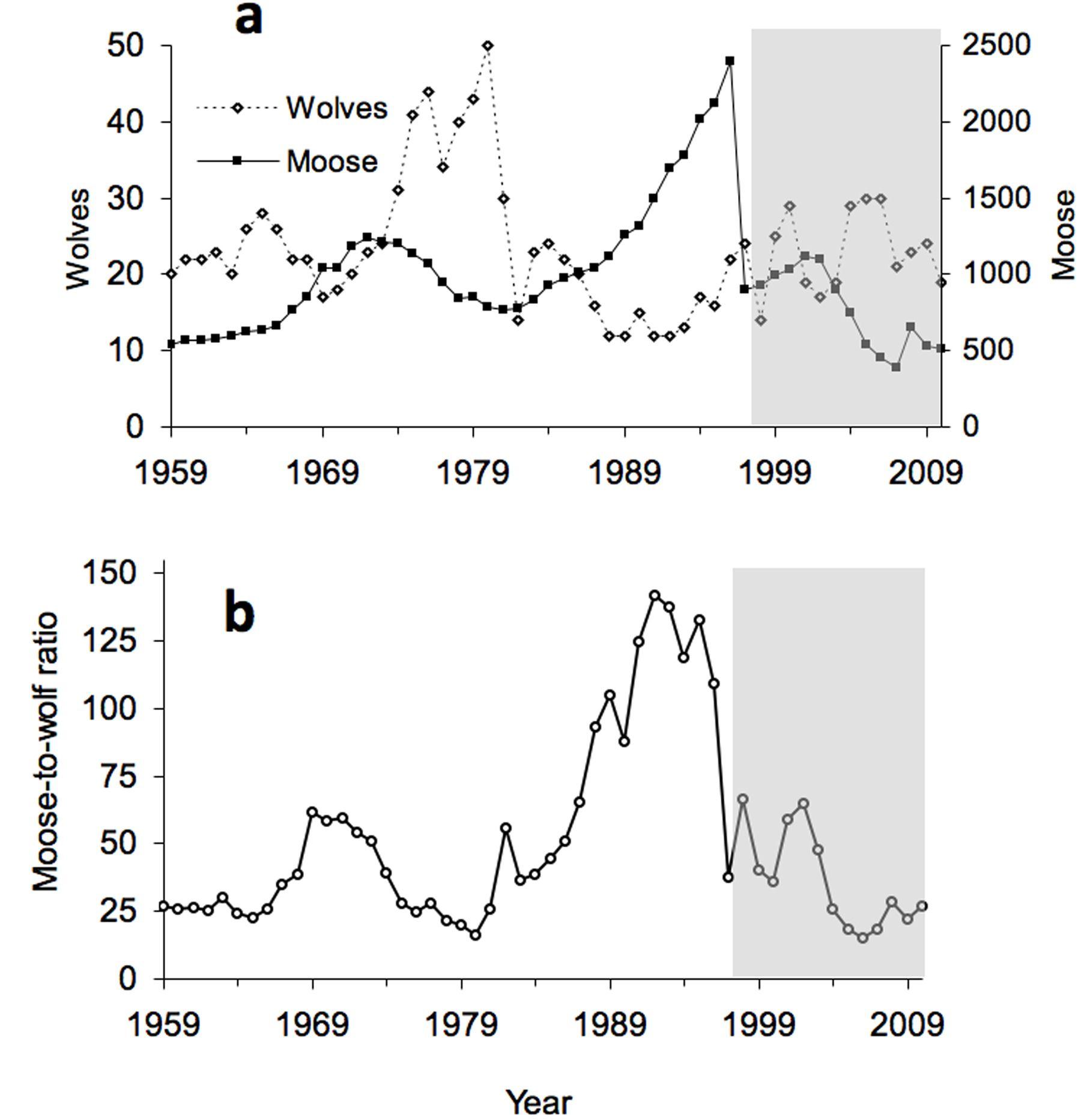 Population Ecology Graph Worksheet