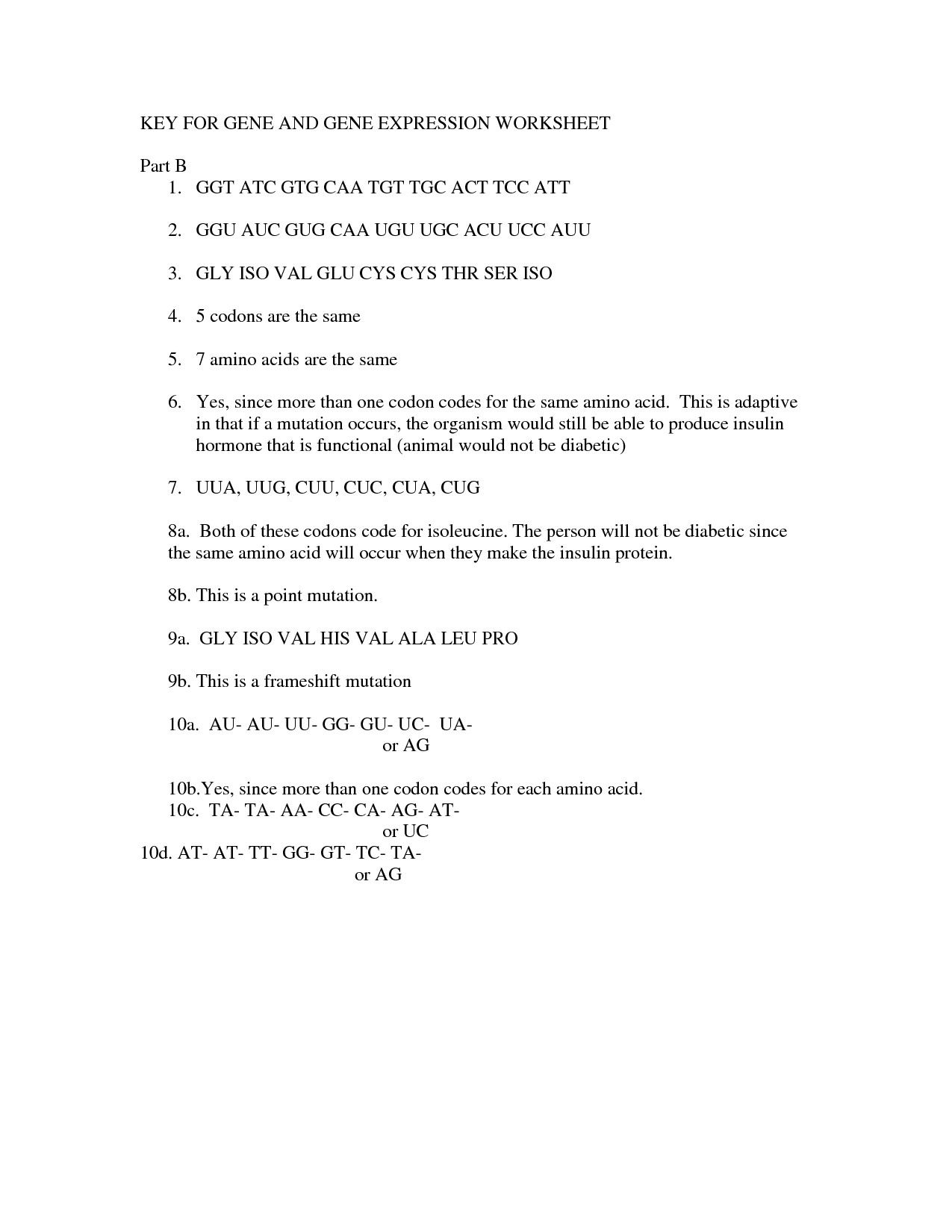 Protein Synthesis And Amino Acid Worksheet Answer Key