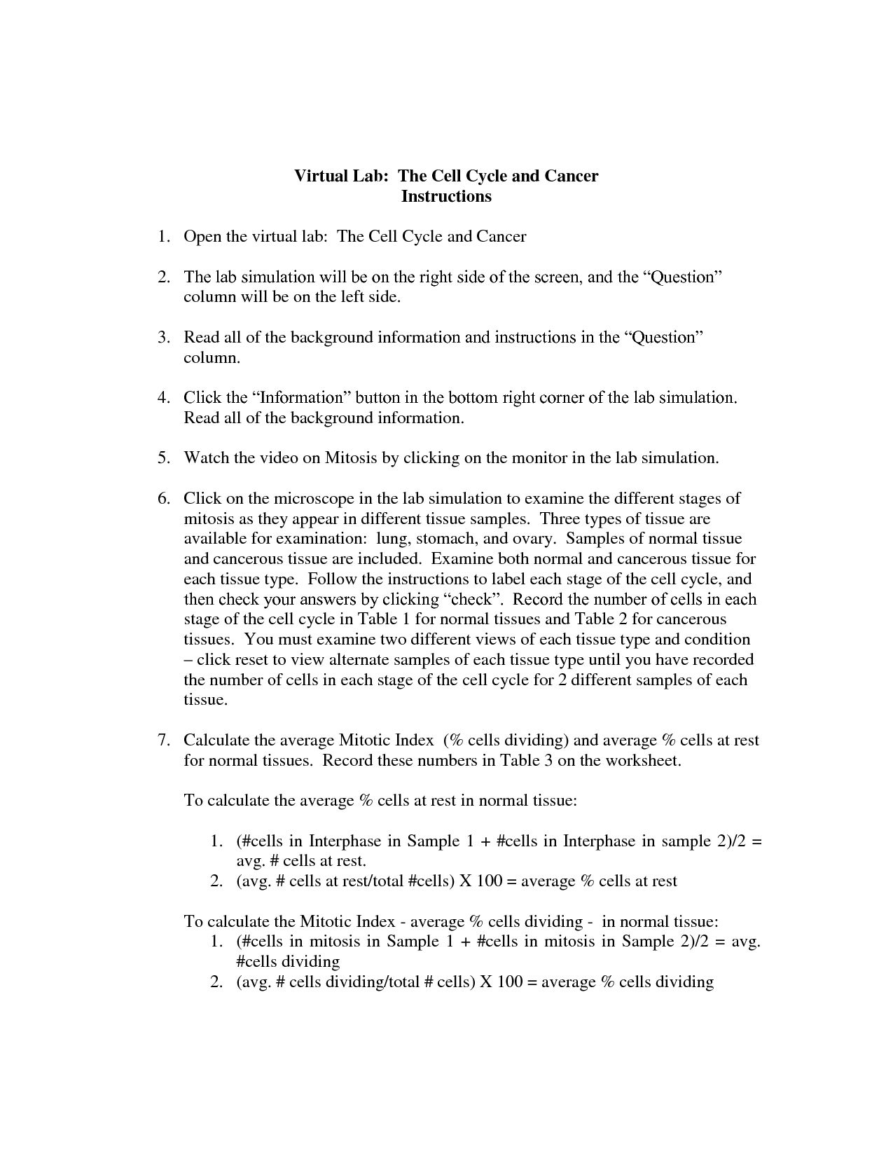 The Cell Cycle Worksheet Answer Key